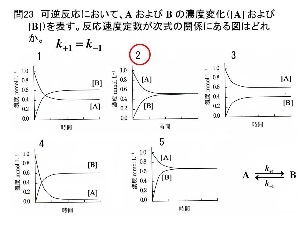 問23 可逆反応において、A および B の濃度変化([A] および [B])を表す。反応速度定数が次式の関係にある図はどれか。